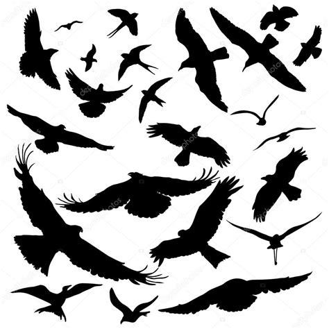 negras siluetas de aves — Vector de stock  nikiteev #69291389