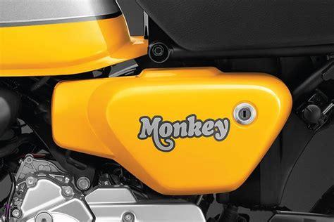 NEW 2022 Honda Monkey 125 Changes Releasing Soon ...