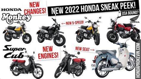 NEW 2022 Honda Monkey 125 & Super Cub Changes Releasing ...