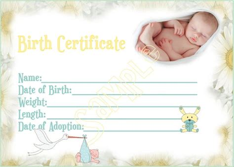 NEW ARRIVAL Reborn Baby Doll Birth Certificate Instant