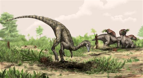 New dinosaur species discovered