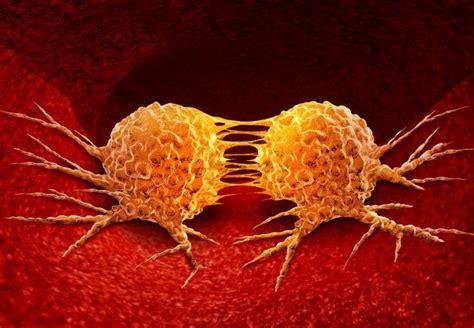 New Drug Blocks Cancer Metastasis