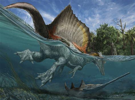 New Fossils Determine the Largest Carnivorous Dinosaur ...