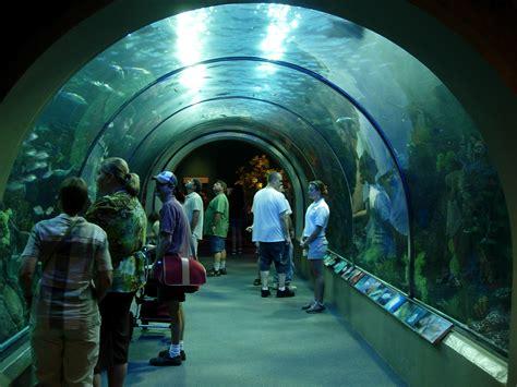 New Orleans Aquarium | Flickr   Photo Sharing!