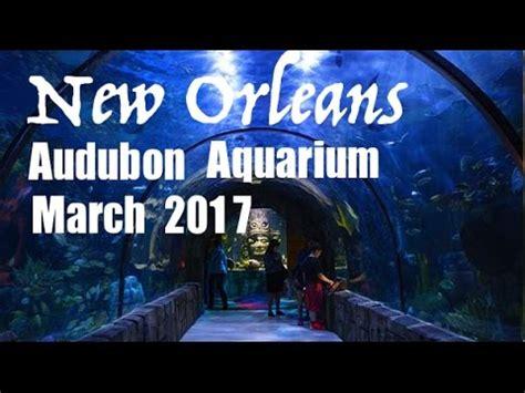 New Orleans Audubon Aquarium of the Americas March 2017 ...