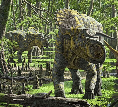 New Species of Dinosaur Found in Utah Was Triceratops ...