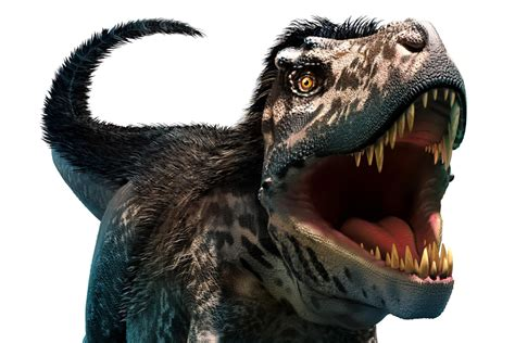 New species of dinosaur related to fearsome Tyrannosaurus ...