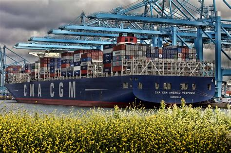 New view on container tracking as MSC joins CMA CGM as an ...
