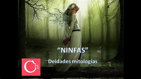 NINFAS YOUTUBE   YouTube