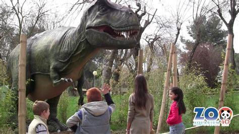 No des de comer al Tiranosaurio Rex | Zoo Madrid   YouTube