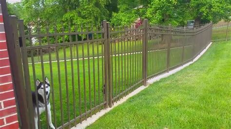 No Dig Dog Fence ~ The Fence for Dogs that Dig!   Outdoor ...