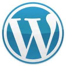 ¡No podía entrar a mi Blog en WordPress, problema resuelto ...