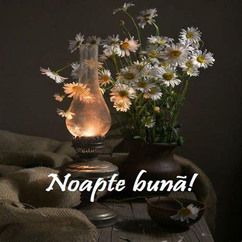 Noapte buna, prieteni dragi!   Mesaje Din Suflet