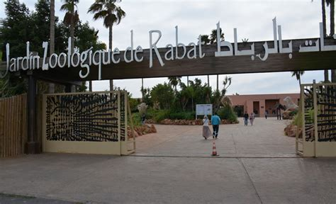 Nombre de visiteurs : Le zoo de Rabat dépasse la barre de ...