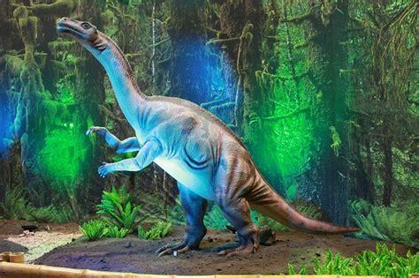 Nombres de dinosaurios de la A a la Z – Dinosaurios