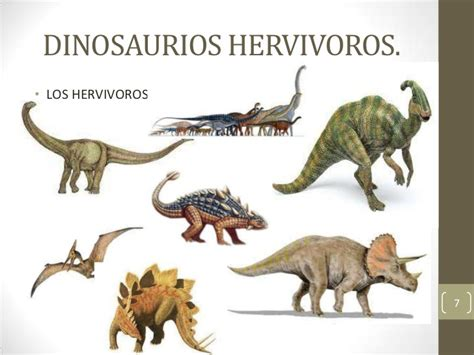 Nombres De Dinosaurios Herbivoros   SEONegativo.com