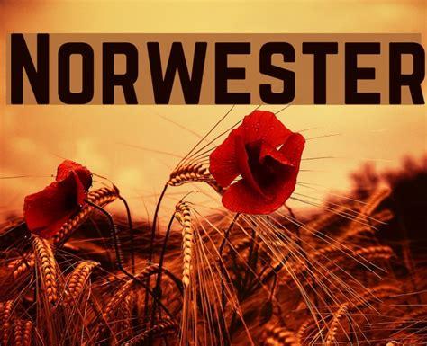 Norwester Font   FFonts.net
