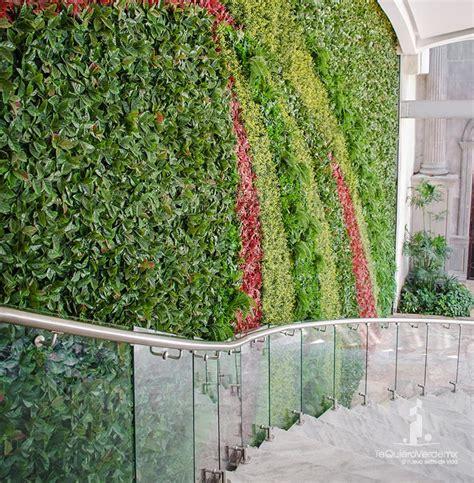 Nuestros productos   Muros verdes naturales   Follaje ...