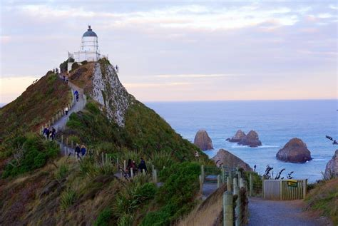 Nugget Point Lighthouse, Ahuriri Flat, New Zealand   The ...