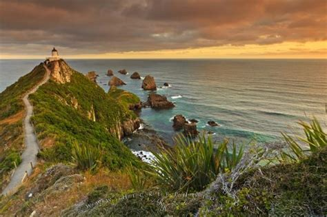 Nugget Point Lighthouse Catlins | Photo, Information