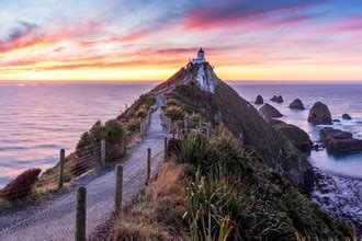 Nugget Point Lighthouse | Clutha, New Zealand