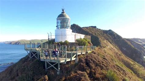 Nugget Point Lighthouse | New Zealand | 2016 | HD   YouTube