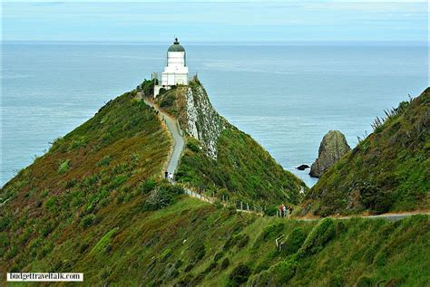 Nugget Point Lighthouse New Zealand | Budget Travel Talk
