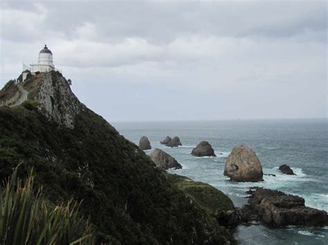 Nugget Point Lighthouse   New Zealand   Wikipedia Entries ...