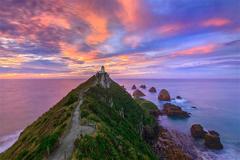 Nugget Point Lighthouse Photos, Limited Edition Print ...