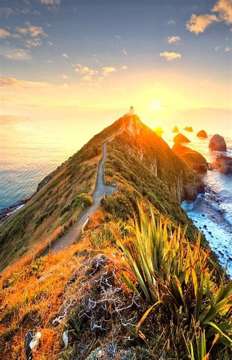 Nugget Point Lighthouse,New Zealand in 2019 | Travel, New ...