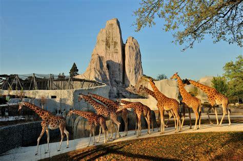 Nuit Blanche 2018 : nocturne gratuite au Parc Zoologique ...