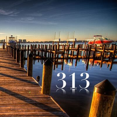 Numerología 313 / Significado del número 313 ⓵⓶⓷ ...