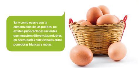 Nutrición de gallinas ponedoras y Calidad del Huevo