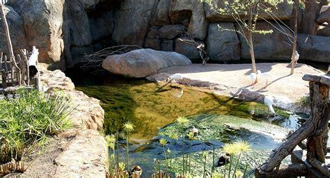 O Leme   Imagens do Bioparc   Jardim Zoológico de Valência