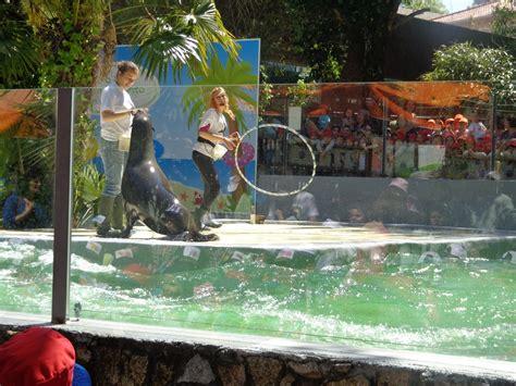 O nosso Dia: Visita de estudo Zoo da Maia
