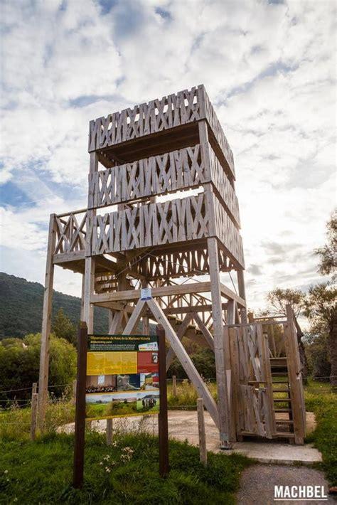 Observatorio de Aves de la Marisma Victoria en Noja: 3 ...