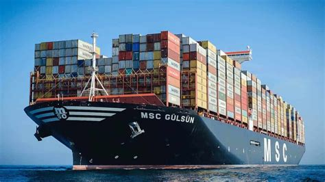 Ocean freight rates now pointing downward after November ...