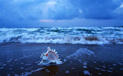 Ocean Wallpaper and Background Image | 1680x1050 | ID ...