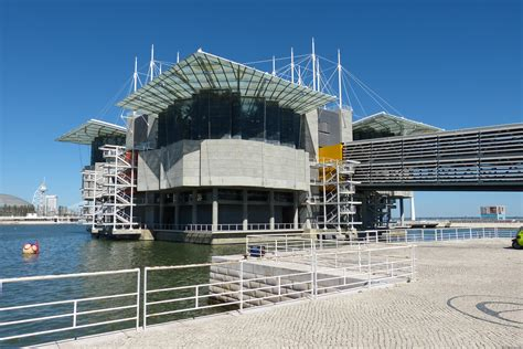 Oceanário de Lisboa   Wikiwand