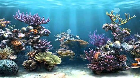 Océano  protector de pantalla    YouTube
