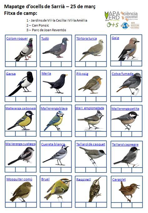 Ocells de Sarrià – Mapa Verd de Sarrià