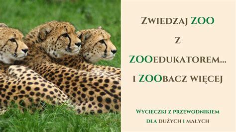 Oferta edukacyjna   Edukacja   Zoo Warszawa