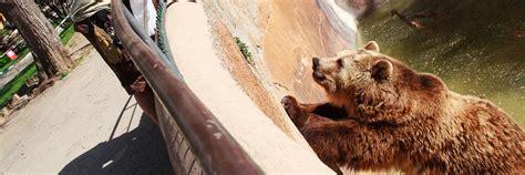 Ofertas Hotel + Entradas Zoo Barcelona