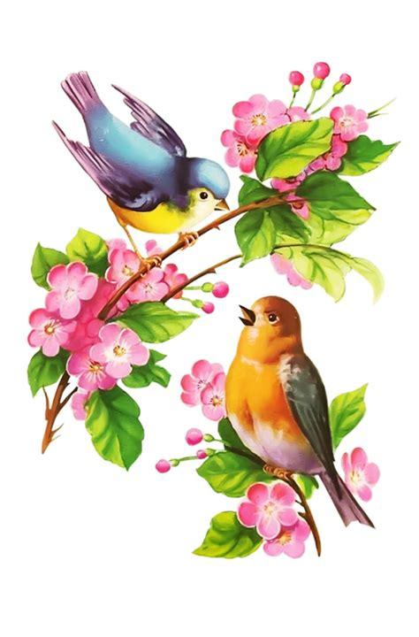 oiseaux,birds,dessin,png,couleur   Dessin oiseau, Dessin ...