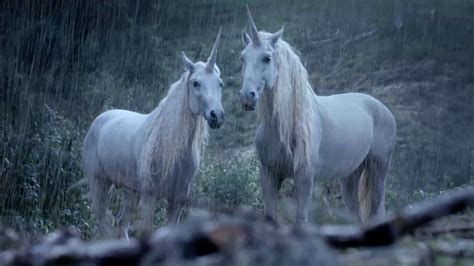 OK don't panic, but scientists have proven that UNICORNS ...