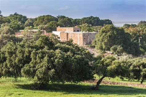 Old charm farm among Argan trees   Farm stays for Rent in ...