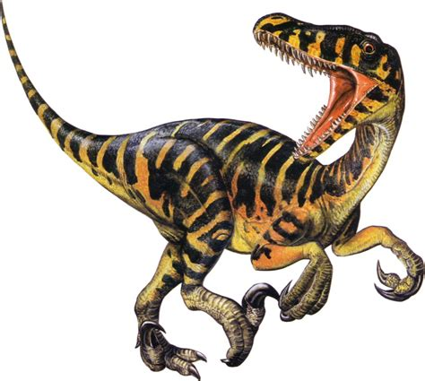On The Care and Feeding of Velociraptors
