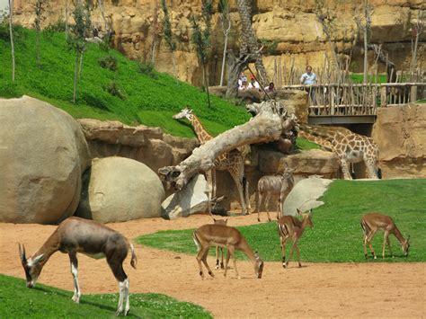 Opiniones de Zoo de Valencia