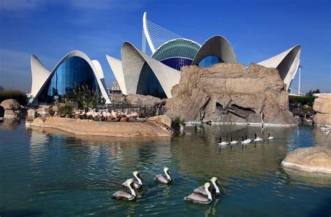 Opiniones del parque Oceanografic Valencia   PACommunity