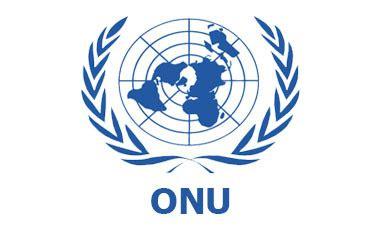 Organización de las Naciones Unidas | Coordinación General ...